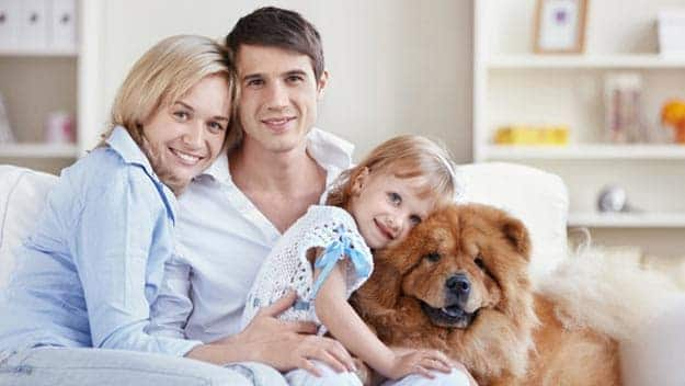 Wills & Trusts dog-young-family Direct Wills Royal Wootton Bassett